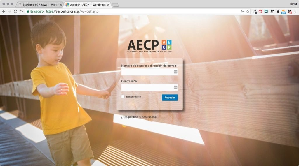 basico wordpress login aecp