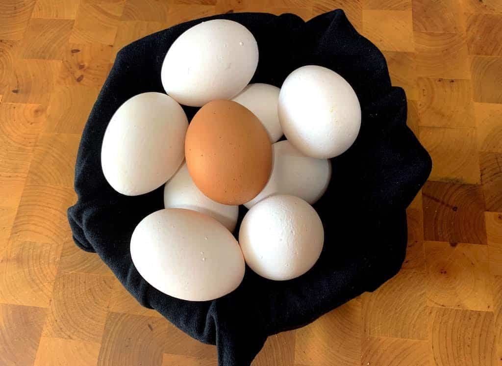 cesta de huevos blancos y uno marrón